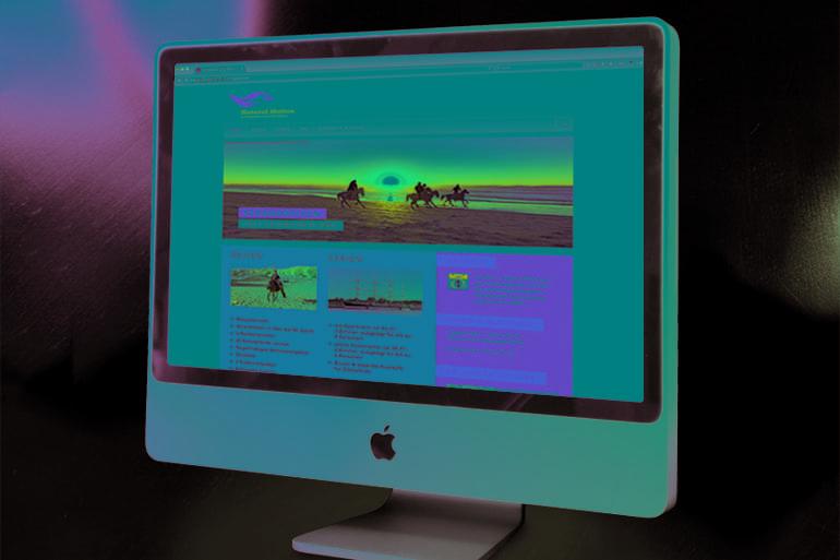 Website · Natural Motion