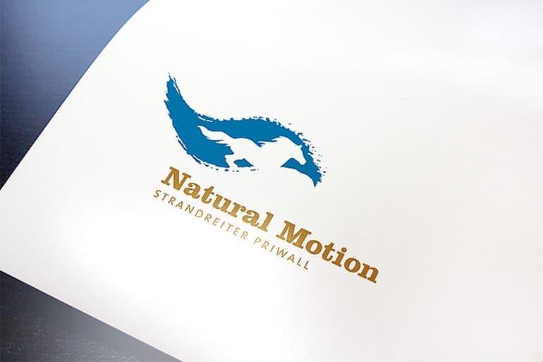 Logo-Entwicklung · Natural Motion